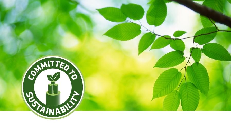 Umweltmanagement in Deutschland
